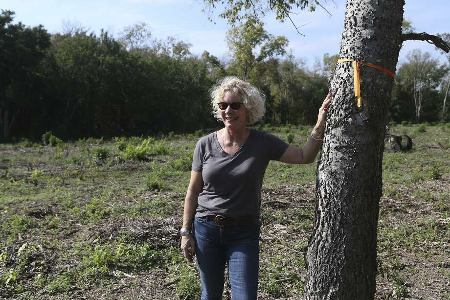 On Nov. 6, 2017, ChildSafe CEO and President Kim Abernethy stands at the site where the new ChildSafe Salado Creek Campus will be built. The facility, located in the area of Interstate 10 and East Houston Street, is scheduled to open in May 2019. Photo: John Davenport /San Antonio Express-News / ©John Davenport/San Antonio Express-News