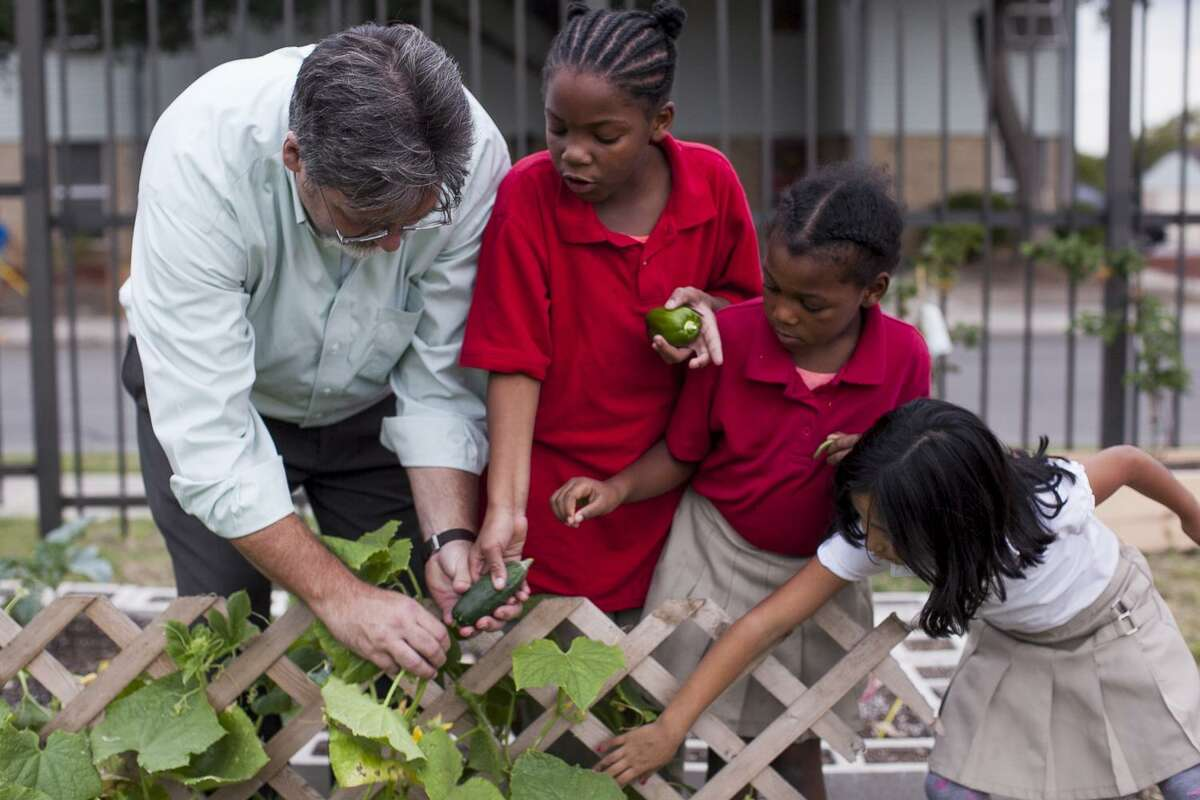 Jeff Crane, a former member of the Green Spaces Alliance board, shows students, (from left) Q-yree West, Raegan Smith, and Amethyst Ramirez, how to harvest cucumbers growing in the youth garden in November 2014 at the Ella Austin Community Center.