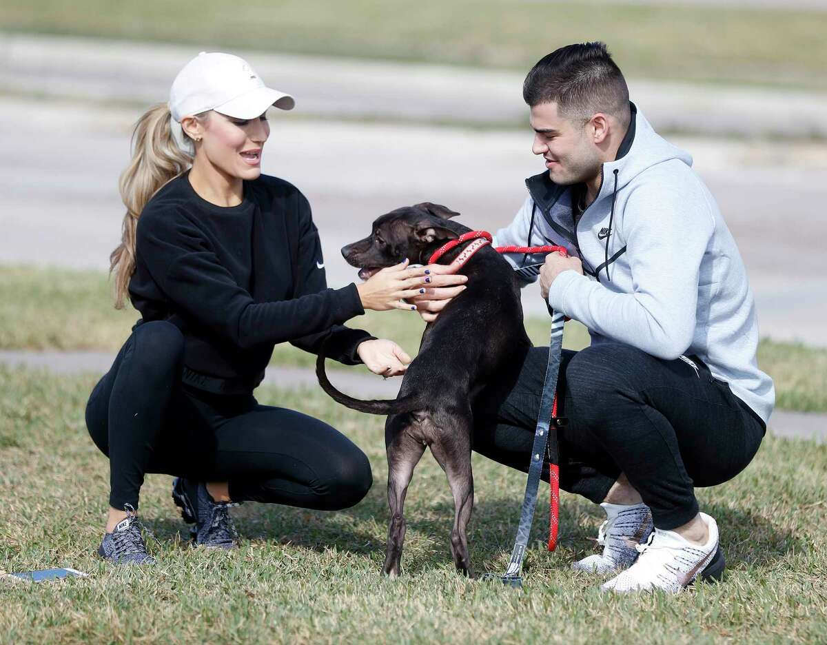 """Houston Astros pitcher Lance McCullers Jr. plays with """"Candy Corn"""" the dog, as he and his wife, Kara, walked dogs at the Houston Pets Alive pet rescue and adoption center at 8620 Stella Link Road, Monday, Nov. 20, 2017, in Houston. McCullers is passionate about helping animals in need of adoption. ( Karen Warren / Houston Chronicle )"""