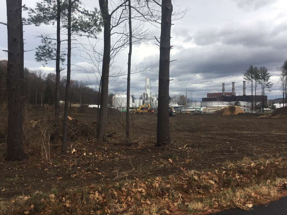 Trees at the southern edge of the Air Products site in Glenmont where an old tenant farmer site from the turn of the 20th century is believed to have been uncovered. The site will not be disturbed as part of a $60 million expansion of the gas plant. Photo: By Larry Rulison
