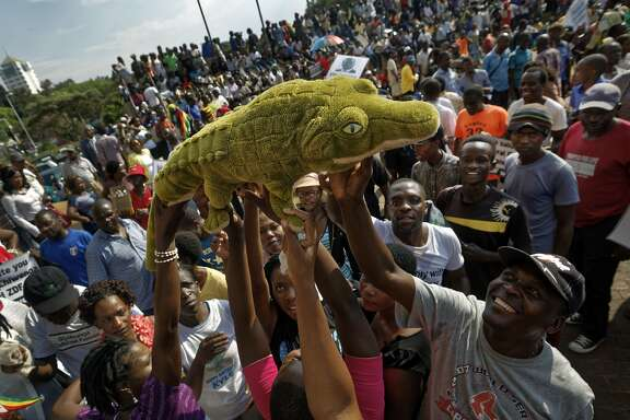 "Supporters of Zimbabwe's President in waiting Emmerson Mnangagwa, known as ""The Crocodile"", raise a stuffed crocodile in the air as they await his arrival at the Zanu-PF party headquarters in Harare, Zimbabwe Wednesday, Nov. 22, 2017. Mnangagwa has emerged from hiding and returned home ahead of his swearing-in Friday. Crowds have gathered at the ruling party's headquarters for his first public remarks. Mnangagwa will replace Robert Mugabe, who resigned after 37 years in power when the military and ruling party turned on him for firing Mnangagwa and positioning his wife to take power. (AP Photo/Ben Curtis)"