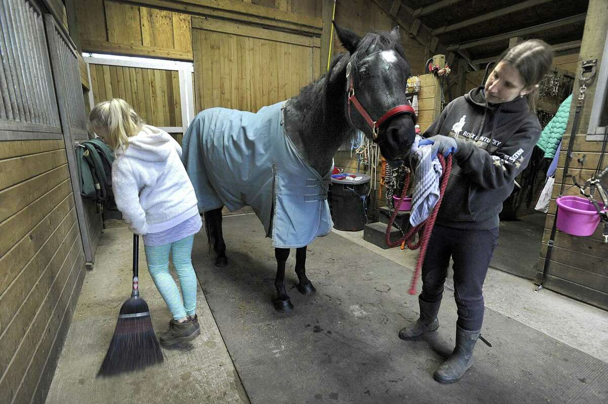 Oliver Twist, a rescue horse at Rising Starr Horse Rescue in Redding, is groomed by volunteer Stacey Young, of Bethel, Wed., Nov. 22, 2017. Annika Swabsin, 11, left, sweeps the barn.