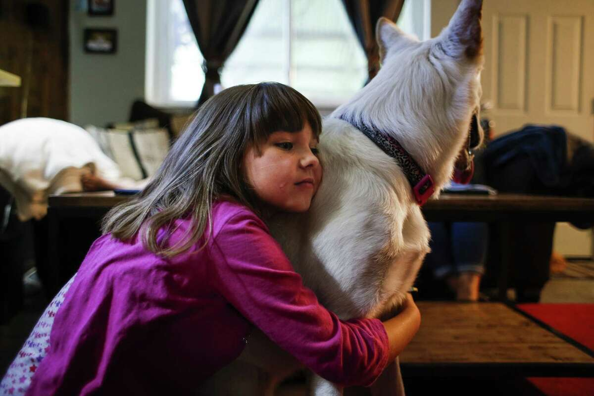 Ava Pettit, 8,hugs the family dog, Zoe. About a year ago, Zoe bit Ava in the face while jumping for a treat. Ava's parents rushed her to a hospital in their insurance network, but four of the doctors who treated Ava were not in network. The family kept the dog, who was just a puppy when the accident happened.