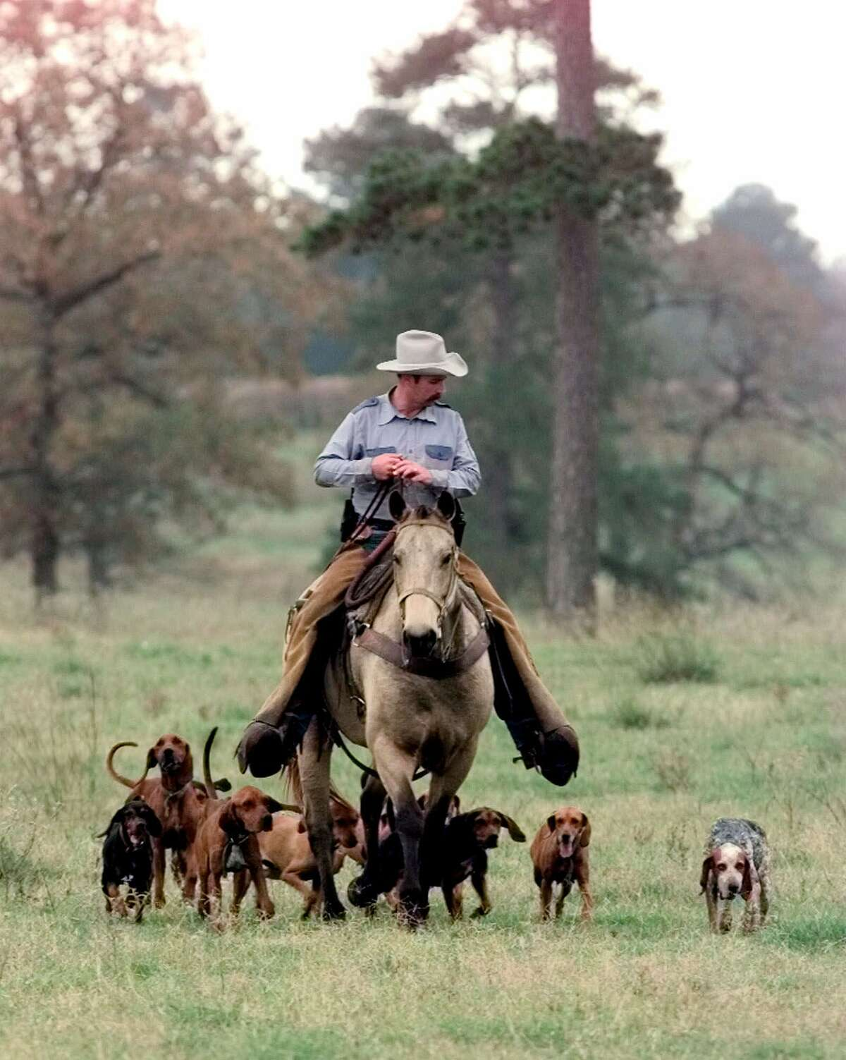 Tracking dogs, as well as horses and helicopters, were used in the search for death row inmate Martin Gurule, who escaped from the Ellis Unit on Thanksgiving 1998. On the Monday after the holiday, Thomas Reedreturns with a group of tracking dogs, but no sign of Gurule.