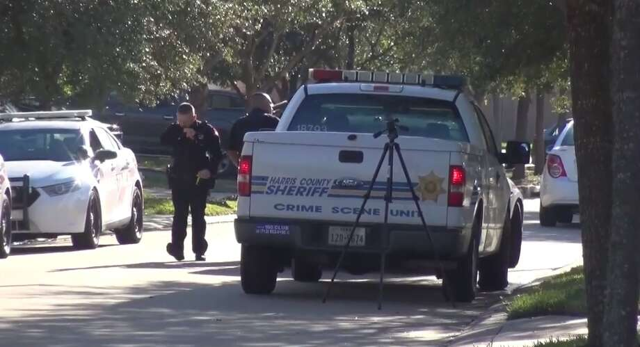 Precinct 4 deputy constables responded to a call of car burglars in the Fairfield community in northwest Harris County early Saturday morning. A police dog tracked one of two suspects to a backyard and during the struggle, the suspect fatally shot himself. Photo: Metro Video