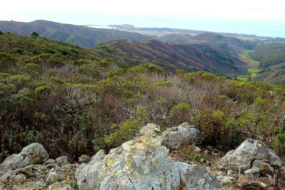 The Spine Ridge Trail in Rancho Corral de Tierra near Moss Beach leads up to a rock outcrop for a spectacular view of the coastal valleys, Pillar Point Harbor and beyond across the ocean