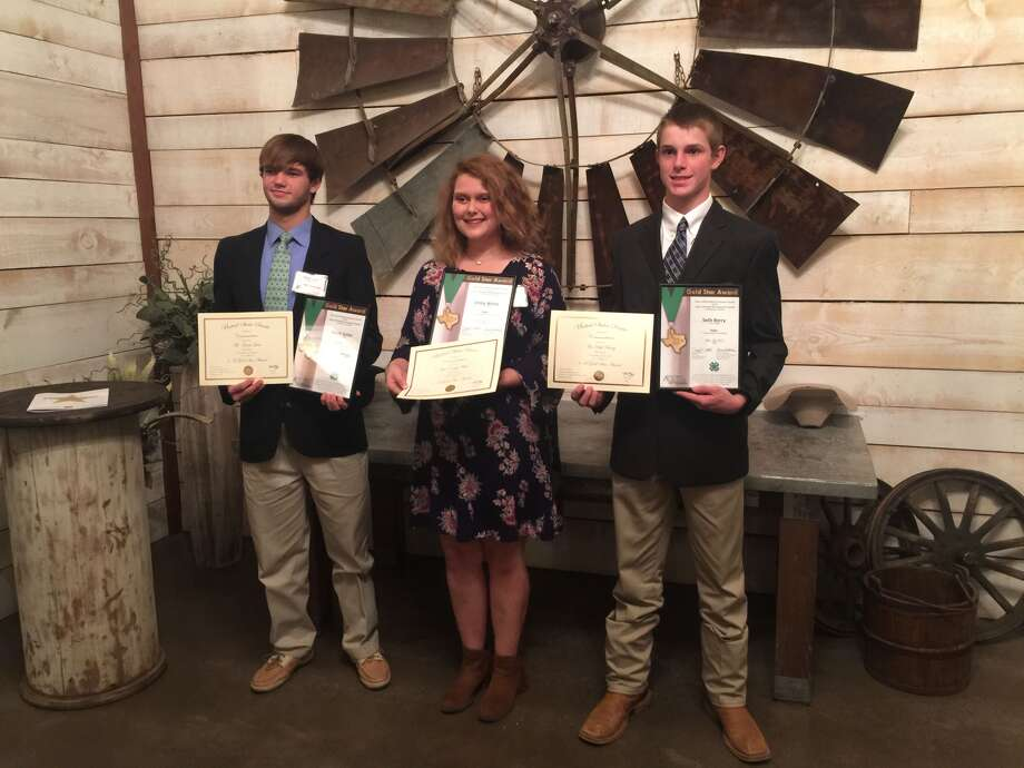Isaiah Geter, Emily White and Seth Berry were honored recently at the 60th Annual District 2 4-H Gold Star Banquet.