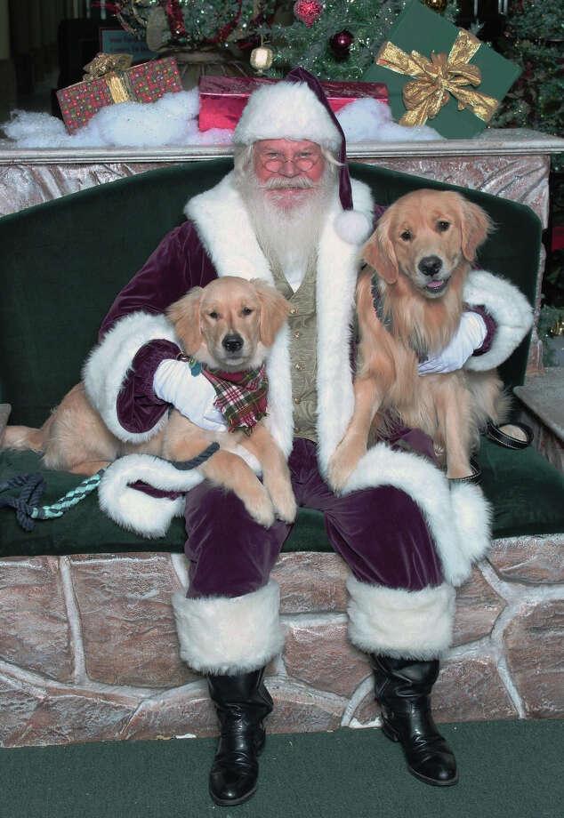 Katy Mills will host the popular Pet Photo Night on Dec. 10. Photo: Katy Mills