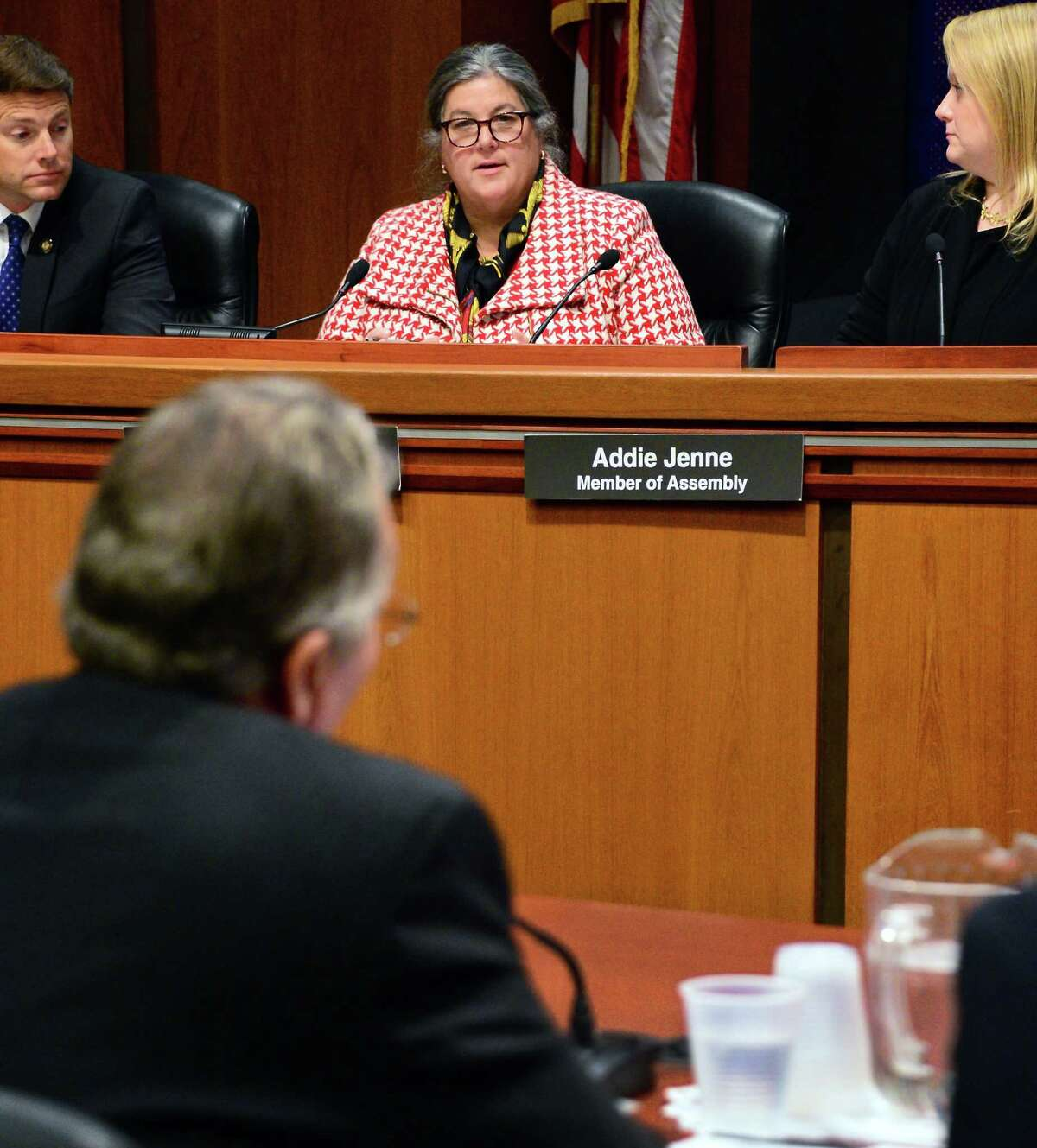 Assemblywoman Carrie Woerner, top center, questions State Commissioner of Agriculture & Markets Richard Ball during the Assembly Standing Committee of Agriculture's oversight of the SFY 2017-2018 State Budget for the NYS Dept. of Agriculture and Markets Tuesday Nov. 28, 2018 in Albany, NY. (John Carl D'Annibale / Times Union)