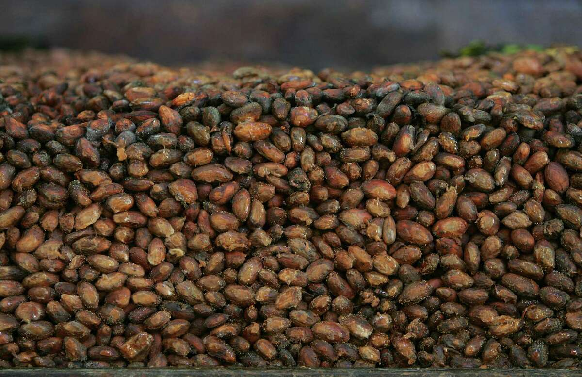This Thursday, Nov. 24, 2005 file photo shows organic cocoa beans in storage at a factory in Ocumare de la Costa, 60 miles west of Caracas, Venezuela. With