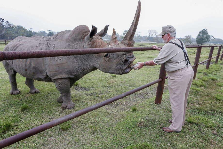 "Clint Wolston, owner of Bayou Wildlife Zoo, feeds ""Pee Wee"" Wednesday, Nov. 29, 2017, in Galveston County. Photo: Steve Gonzales, Houston Chronicle / © 2017 Houston Chronicle"
