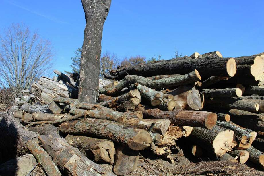 The town is going to court over a large stockpile of logs at a property at the corner of the Post Road and Hulls Highway. Fairfield,CT. 11/28/17 Photo: Genevieve Reilly / Hearst Connecticut Media / Fairfield Citizen