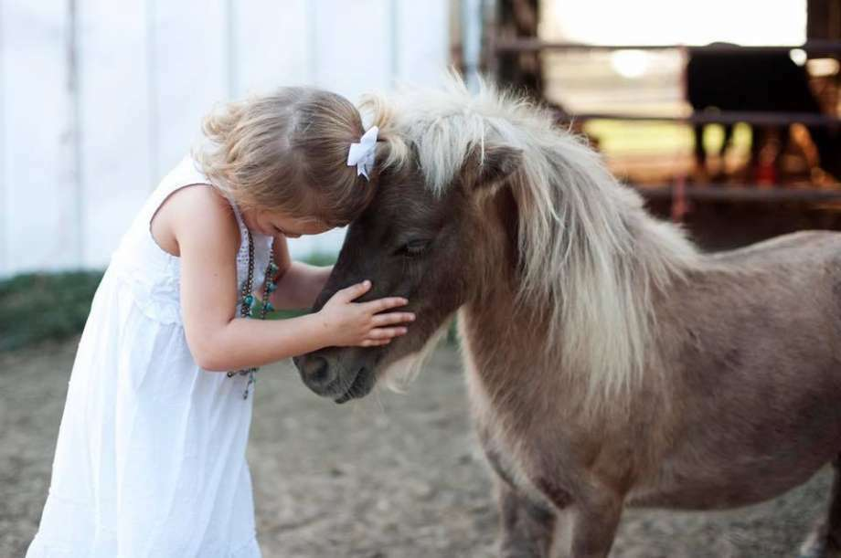 The Brett family of Liberty County is mourning the shooting death of their beloved pony Chicken Nugget. Photo: Facebook