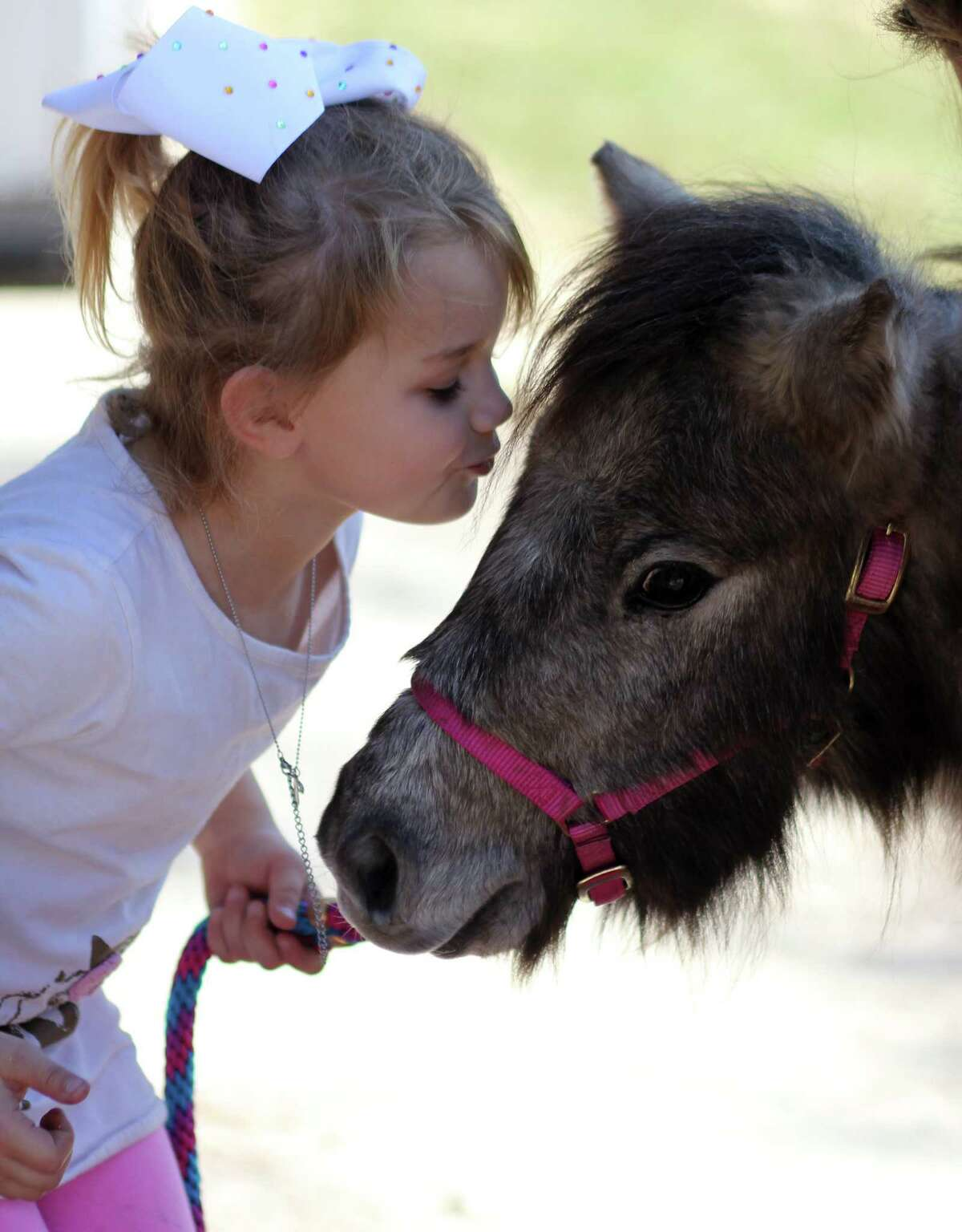 Rylee Brett of Hull leans over to give her new miniature horse, Chicken Wing, a kiss. The mare arrived Thursday from its previous home in New Mexico. It was donated to the Liberty County girl after hers was killed by an intruder at their family farm.