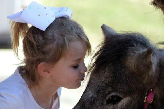 Rylee Brett of Hull leans over to give her new pony, Chicken Wing, a kiss. The pony arrived Wednesday from its previous home in New Mexico. It was donated to the Liberty County girl after hers was killed by an intruder at their family farm.