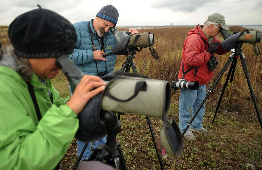 From left; Birders Tina Green, of Westport, Tom Murray, of Stratford, and Frank Mantlik, of Stratford, watch a harlequin duck, a rare visitor to the Sound at Stratford Point Audubon in Stratford, Conn. on Thursday, November 16, 2017. Photo: Brian A. Pounds / Hearst Connecticut Media / Connecticut Post
