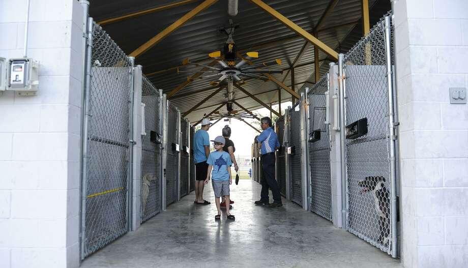 Instalaciones de Servicios de Cuidado Animal. Photo: Danny Zaragoza /Laredo Morning Times