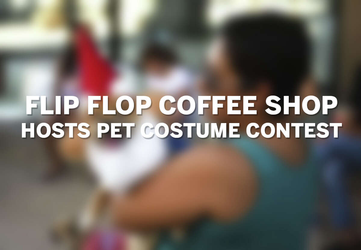 Click through the gallery to see photos from a pet costume contest hosted by local cafe Flip Flop Coffee Shop.
