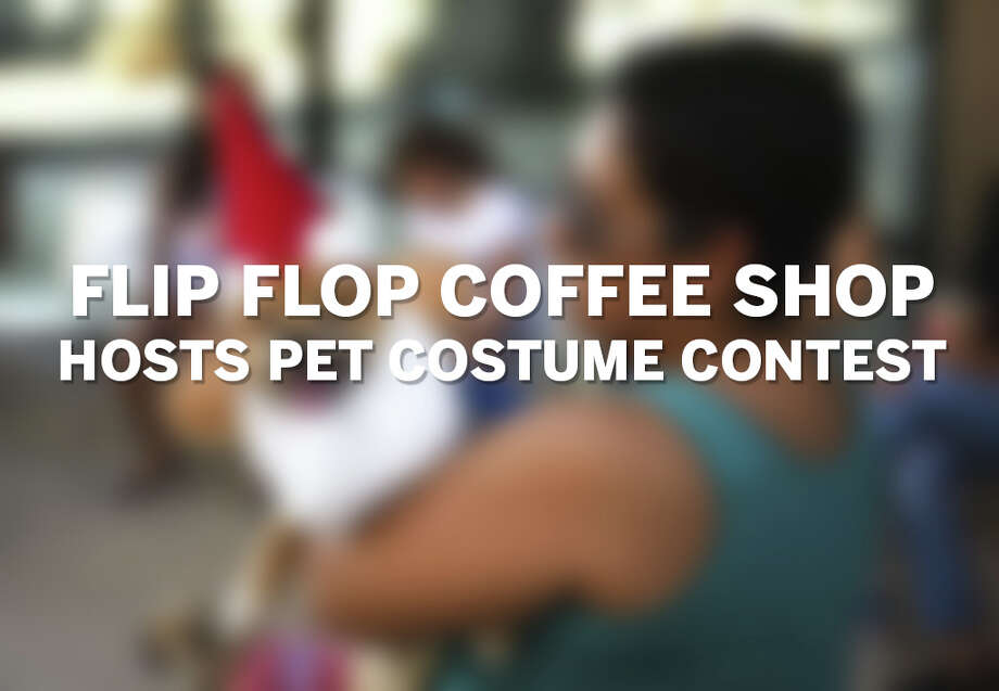 Click through the gallery to see photos from a pet costume contest hosted by local cafe Flip Flop Coffee Shop. Photo: Flip Flip