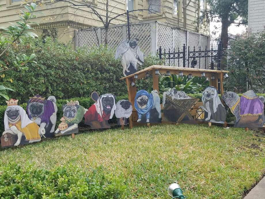 A Southhampton home in Houston is gaining notoriety for their adorable pug Christmas-themed displays. Photo: Heather Leighton, Houston Chronicle
