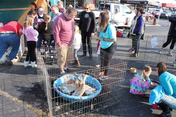 The Cyclery and Fitness Center on Troy Road hosted a petting zoo Saturday. Guests had the opportunity to pet and feed a number of animals including goats, donkeys, rabbits, a pig, chickens and miniature horses. The event also featured free hot cocoa and cookies.