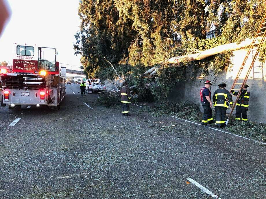 A tree that fell onto the roadway on southbound Highway 101 early Monday snarling traffic for the morning commuters, officials said.