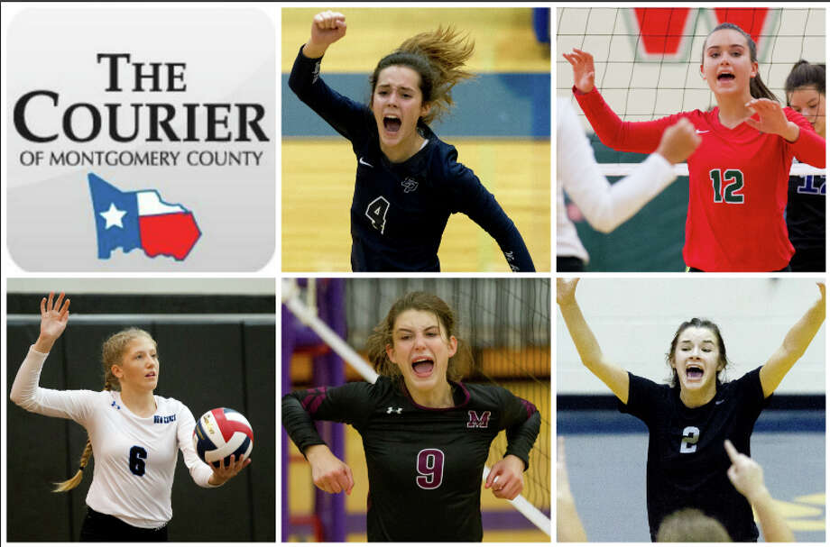 College Park's Noelle Palmer, The Woodlands' Clara Brower, New Caney's Cassidee Love, Magnolia's Madi Cole and Oak Ridge's Kenzie Arent are The Courier's nominees for Newcomer of the Year.