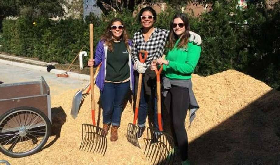 Sign up to become a volunteer for Hermann Park Conservancy on Saturday, Dec.9, and help out in the park's McGovern Centennial Gardens. Photo: Hermann Park Conservancy