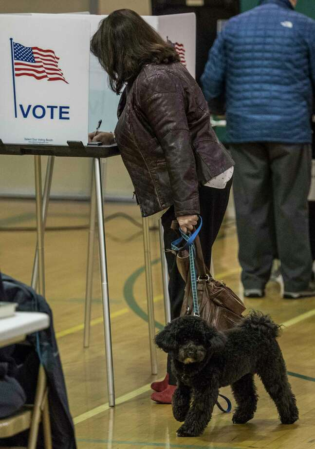 Kelly DeFeciani gets no help with her vote on the land deal from her pup Finnigan at the Gowana Middle School Tuesday Dec 5, 2017 in Clifton Park, NY.   (Skip Dickstein/ Times Union) Photo: SKIP DICKSTEIN, Albany Times Union / 20042305A