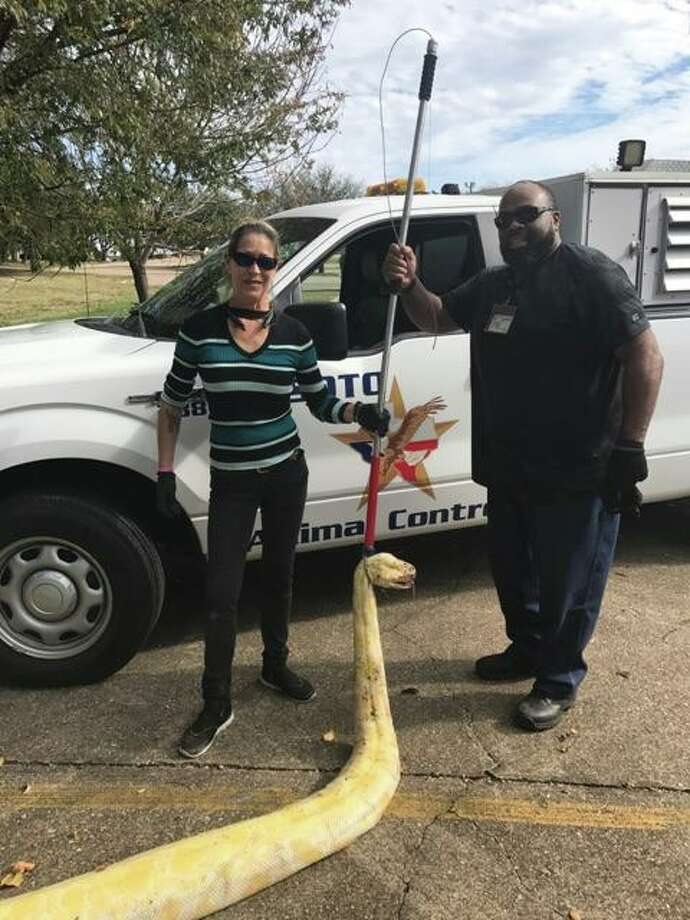 DeSoto Animal Control pose with a python they found on Saturday, Dec. 2, 2017.
