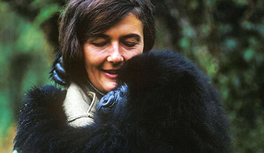 Primatologist Dian Fossey (National Geographic)