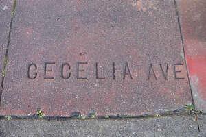 CECELIA  — you're breaking my heart.   Location:  Cecilia Avenue and 16th Avenue
