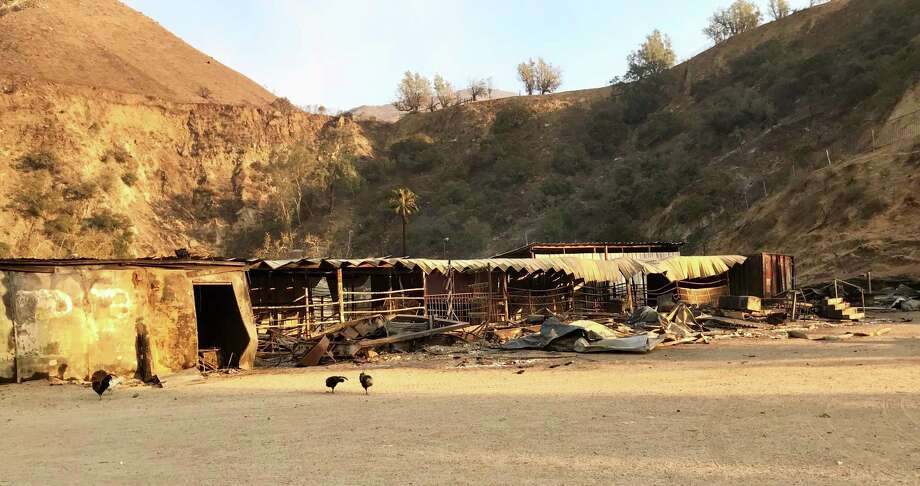 The Padilla family horse ranch in Sylmar was ruined by the Creek Fire. Photo: Steve Rubenstein / The Chronicle / Steve Rubenstein / The Chronicle