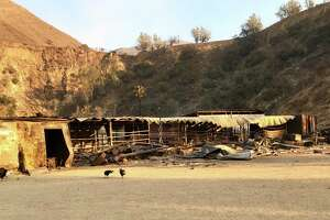 The Padilla family horse ranch in Sylmar was ruined by the Creek Fire.