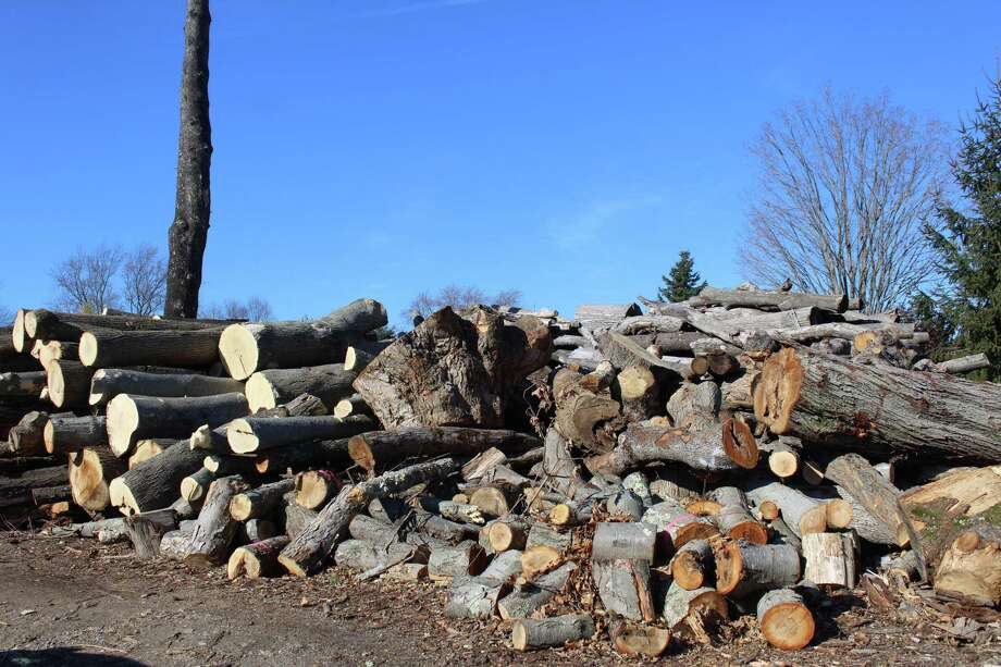A Superior Court judge has issued a temporary injuction that requires a Westport couple to clear all the logs off of a Hulls Highway property by Jan. 20 of next year. Fairfield,CT. 12/6/17 Photo: Genevieve Reilly / Hearst Connecticut Media / Fairfield Citizen