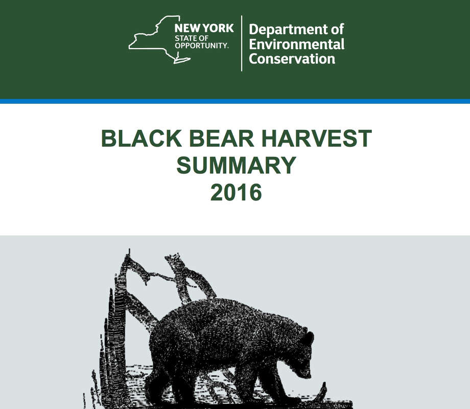 Excerpt from the 2016 New York State Department of Environmental Conservation's Black Bear Harvest Summary. Photo: NYS DEC