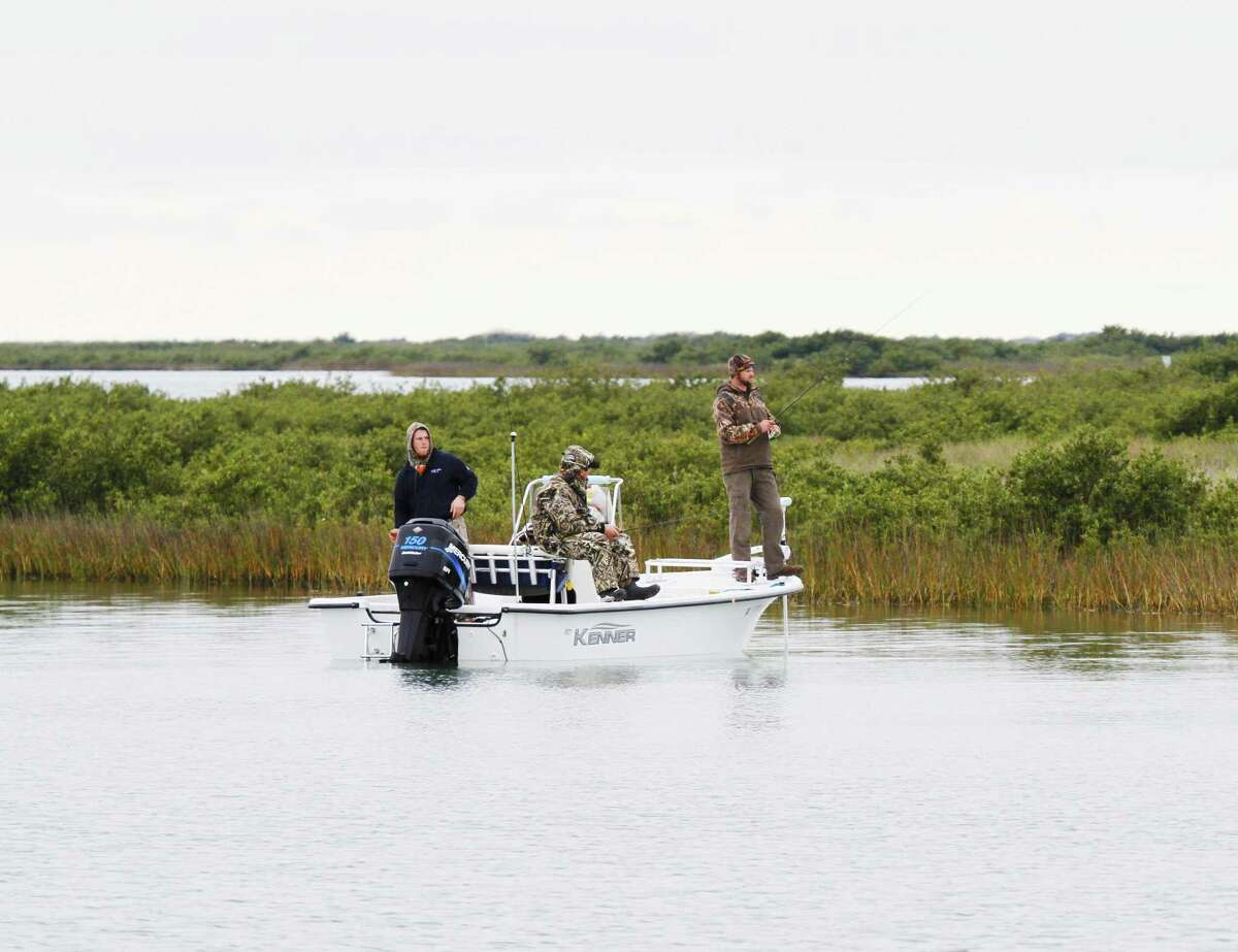 Anglers fish along a Texas bay shoreline lined with black mangrove, a cold-intolerant tropical shrub/tree that has over the past decades greatly expanded its range and abundance in intertidal areas of the coast in the absence of killing freezes.
