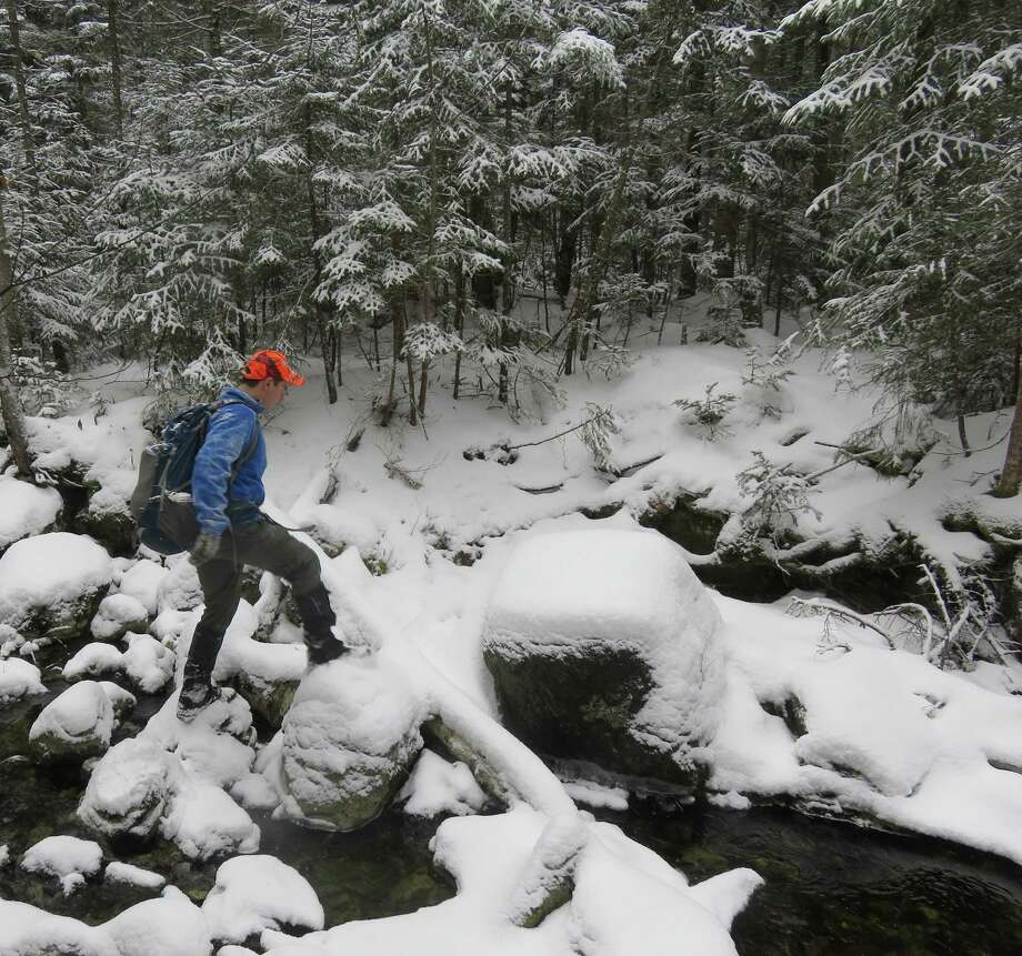 As aspiring 770 finisher crosses a brook near North Henderson peak in the Adirondack high peaks. The author fell in the brook three times. Photo courtesy Herb Terns Photo: Picasa