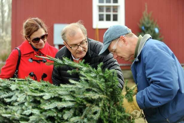 Teoman Turut, center, and Leonor Turut examine their Christmas tree as it gets trimmed by fellow Westport resident Jim Kineon during the Ambler Farm annual greens sale on Hurlbutt Street in Wilton, Conn. on Sunday, Dec. 3, 2017.