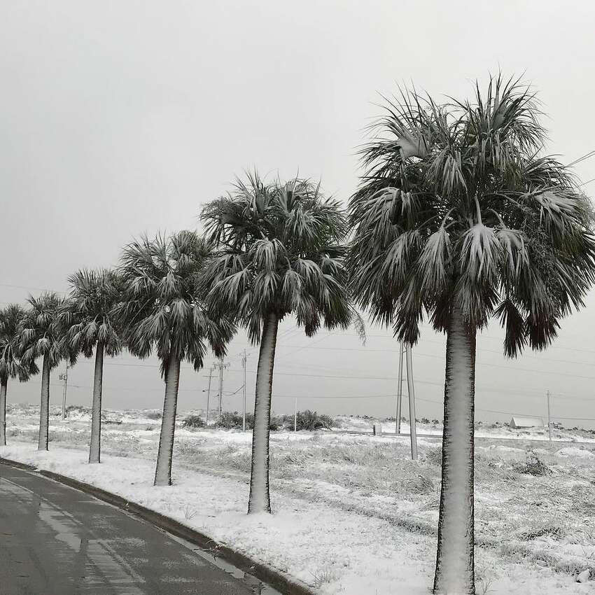 It's a beautiful Winter morning in Port Aransas, complete with #snow.