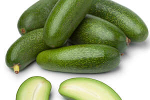 British supermarket chain Marks and Spencer's new pitless avocado can be eaten whole, skin and all. It's also a breeze to slice.