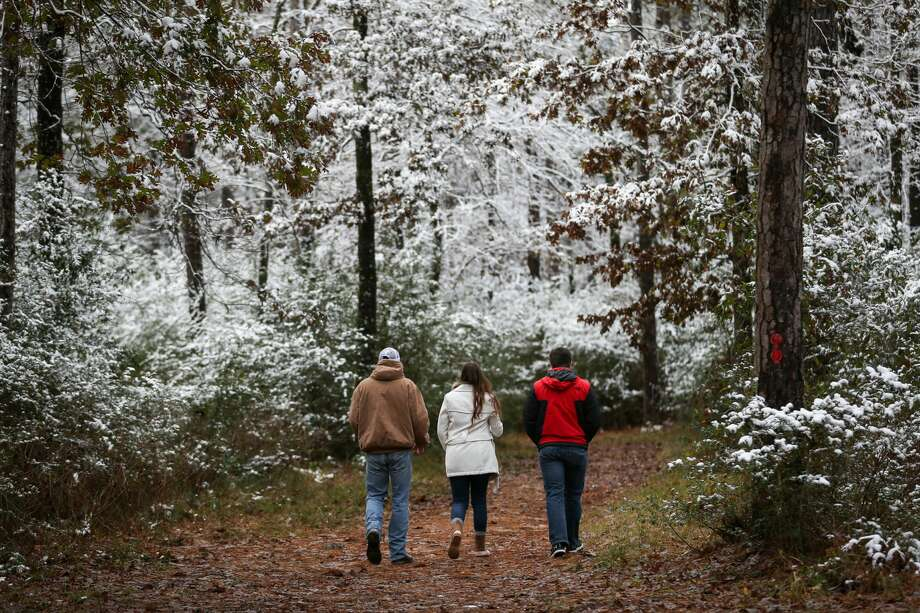 A family hikes among snow covered trees and bushes in W.G. Jones State Forest on Friday, Dec. 8, 2017. Photo: Michael Minasi/Houston Chronicle