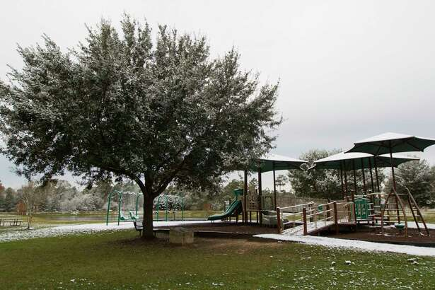 The tree next to the playground at Carl Barton Jr. Park was planted on Dec. 27, 2004 on the 100th anniversary of Conroe's incorporation. A plaque recognizes the Conroe Centennial Committee and the 100th anniversary of the town. The Centennial Tree was captured on Friday morning after a dusting of snow fell overnight.