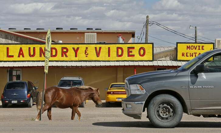 A feral horse walks along a street in Chinle, Arizona, on the Navajo Nation Monday Oct. 2, 2017.