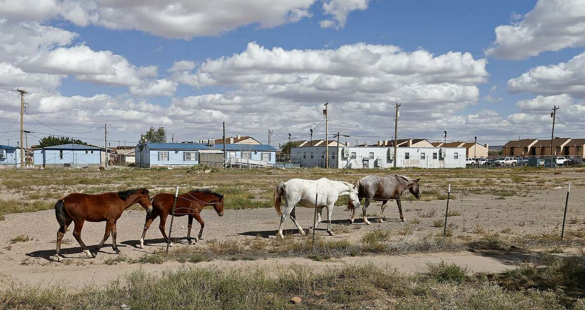 Feral horses walk along a street in Chinle, Arizona, on the Navajo Nation Monday Oct. 2, 2017.