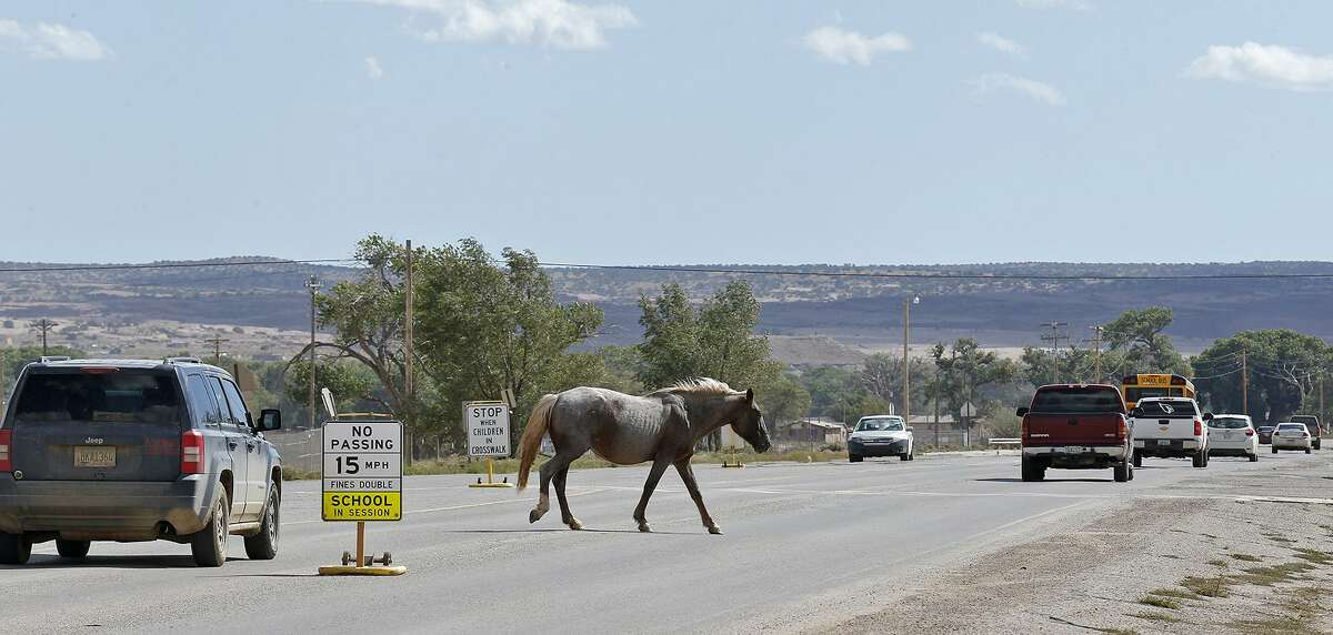 A feral horse walks across a street in Chinle, Arizona, on the Navajo Nation Monday Oct. 2, 2017.