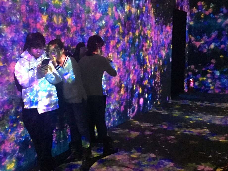 """The Living Digital Forest,"" recently at Beijing's Pace Gallery, is a popular spot for selfies. Photo: Jeanne Cooper, Special To The Chronicle"