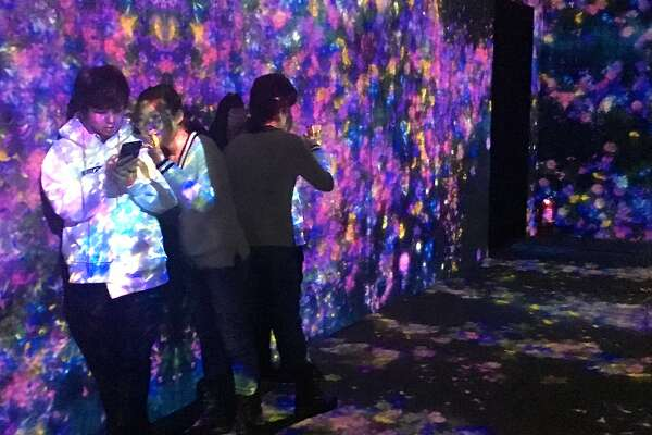 Projections of randomly generated flowers cover visitors to �The Living Digital Forest� installation in Beijing�s 798 Arts District