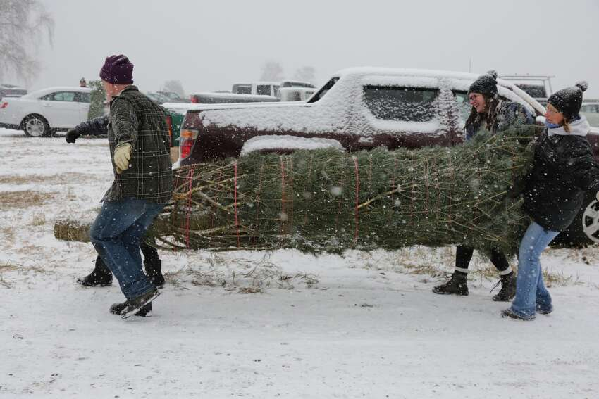 27.4 million real Christmas trees were purchased in 2017 - the same number of trees purchased during the holiday season in 2016. Source: National Christmas Tree Association