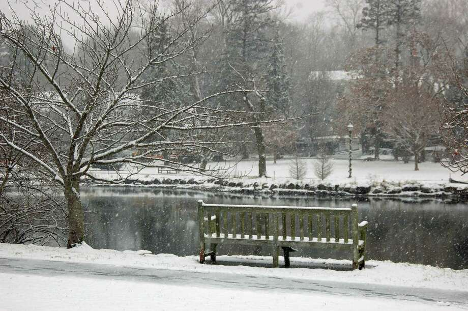 Binney Park is blanketted in snow Saturday. A resident spotted a coywolf in the park this week. Photo: Ken Borsuk